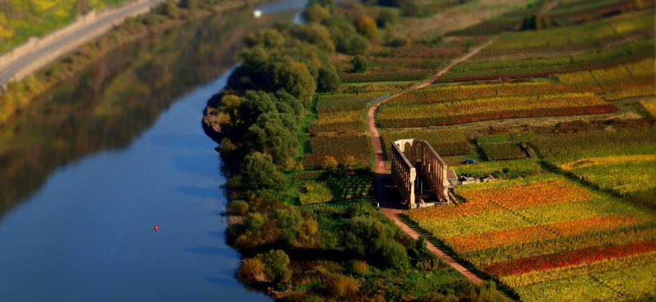 Herbst an der Mittelmosel